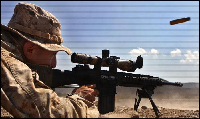 Снайперская Винтовка SR-25 | Mk.11 | XM110