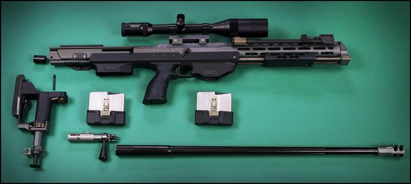 Снайперская Винтовка DSR-Precision DSR-1 | DSR-50