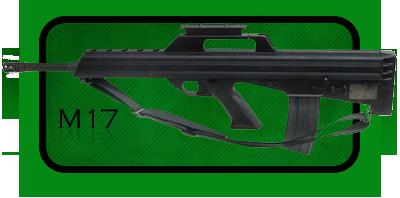 Автомат | Штурмовая Винтовка Bushmaster M17