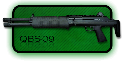 Гладкоствольное ружье | Дробовик QBS-09